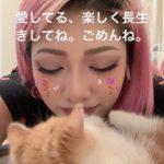 木村花さんの猫はどうなった?名前はからあげくん